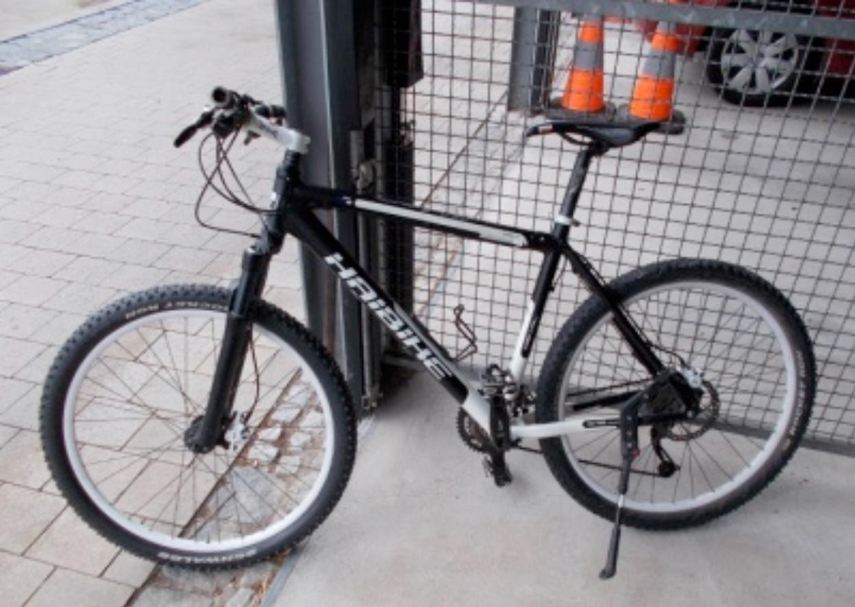 Bild 6- Mountainbike, Marke Haibike, schwarz-weiß