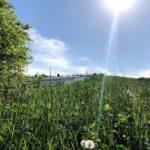 """Deponie """"Im Dienstfeld"""" besichtigt – CSU-Kreistagsfraktion zu Besuch in Aurach"""